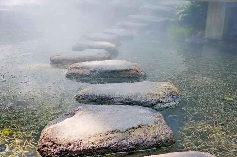 Life & Mindfulness Practitioner ON-LINE