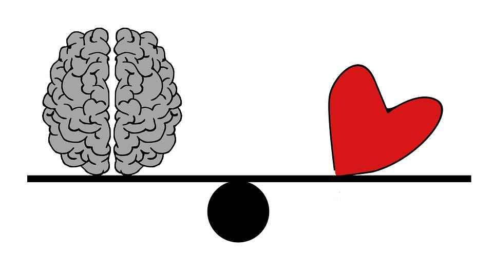 hjernen. jpg.jpg