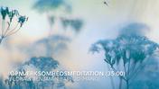 FLORAs Opmærksomhedsmeditation 35:00 .mp4