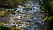 Guidet Meditation (6 min) - Flora Eriksen.mp4