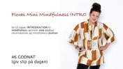 Floras Mini Mindfulness INTRO FILM #6