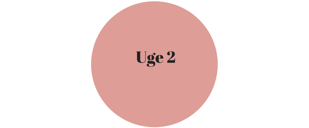 uge 2.png