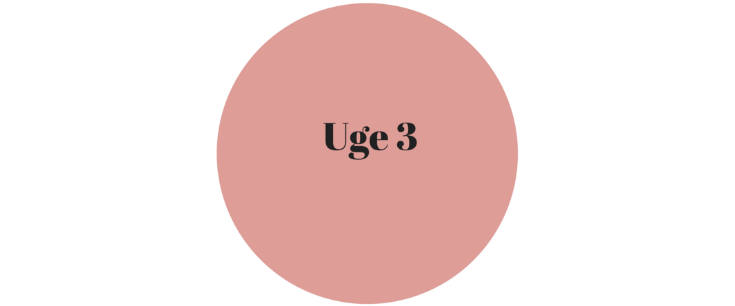 uge 3.png