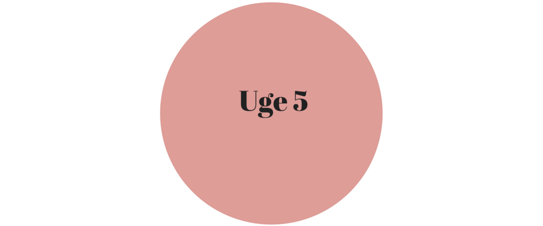 uge 5.png