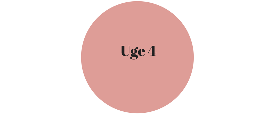 uge 4.png