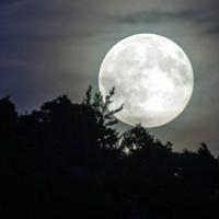 Full Moon Guided Meditation
