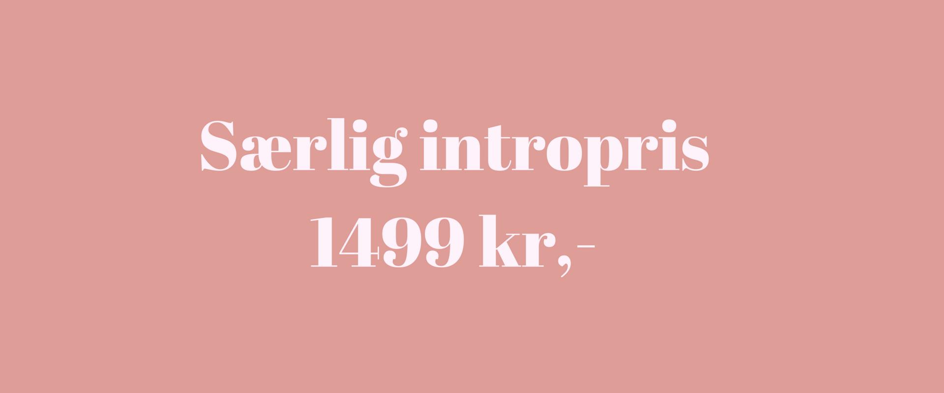 Særlig intropris.png