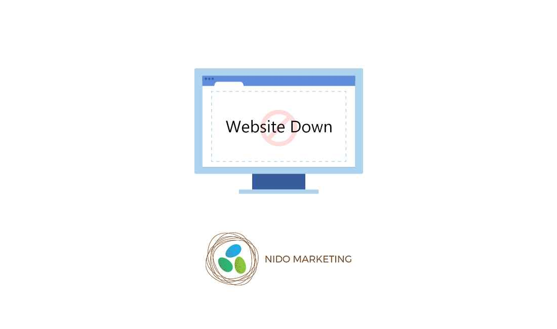What to Do When Your Website Goes Down