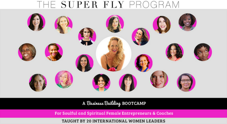 The Super Fly Program (Self-Guided Version)