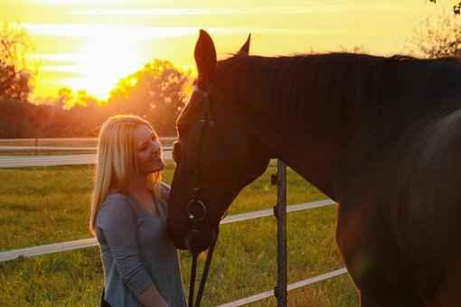 horse human