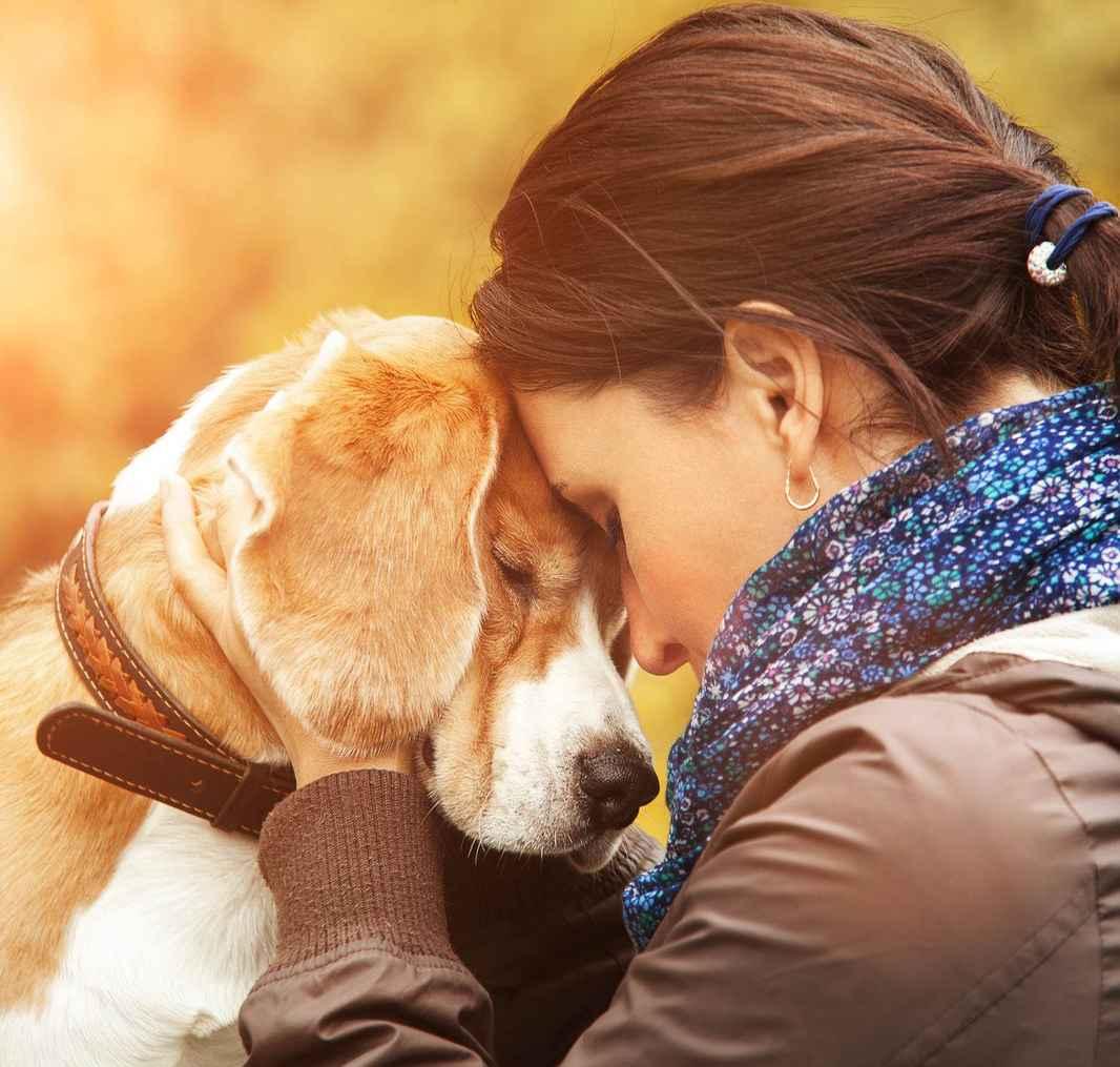 Dame og hund nærhet.jpg