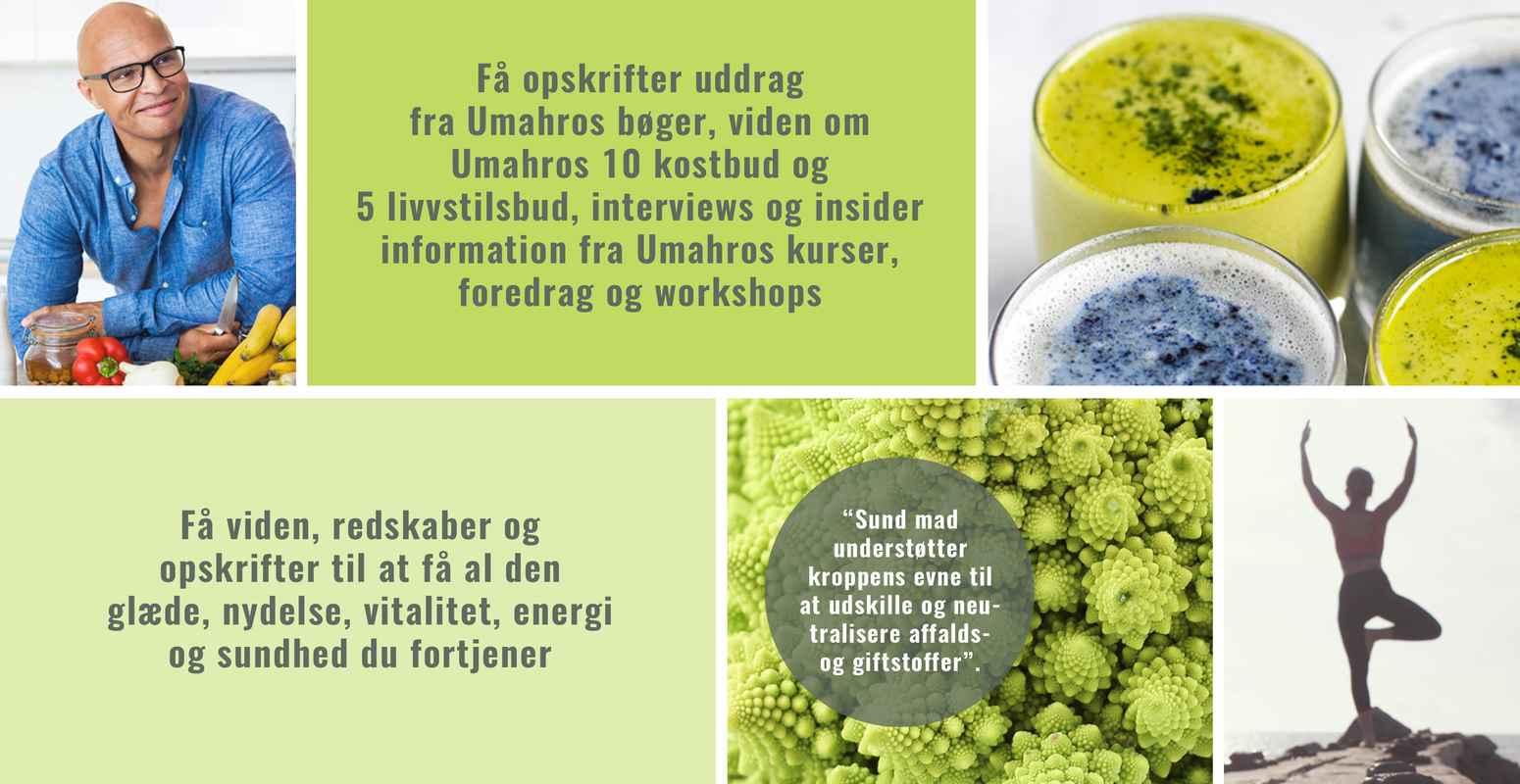 umahro.dk Nyhedsbrev_Footer billede