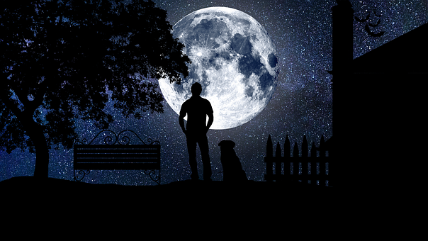 man moon dog-3121255__340
