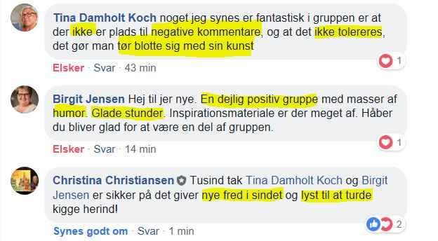 FB gruppe Birgit og Tina og CC.JPG