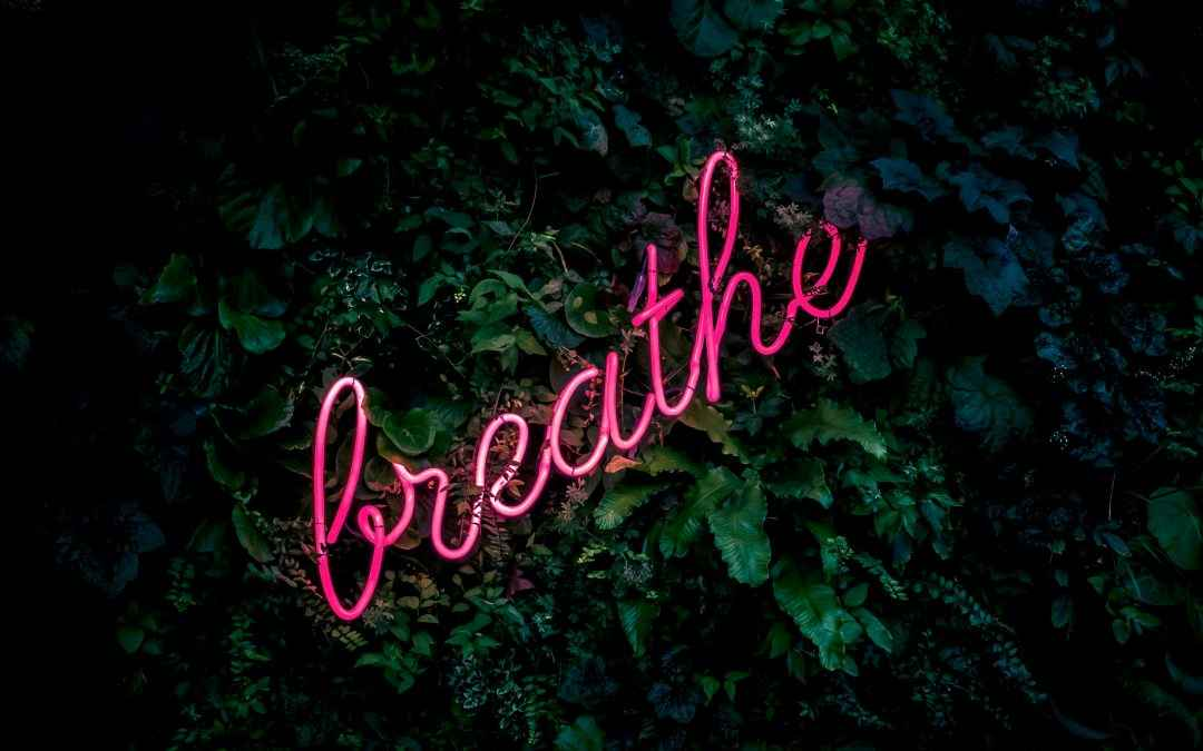 Image | Blog | Blank Image Breathe