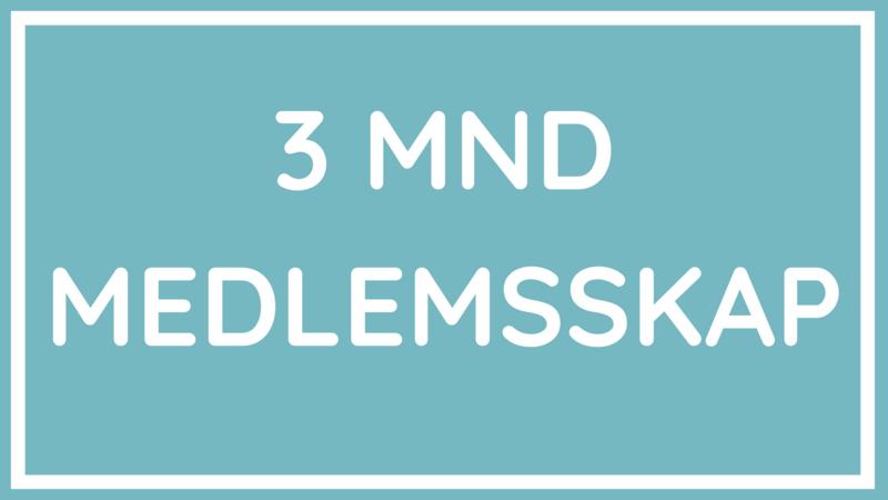 KURSETS LEKSJONER (14).png