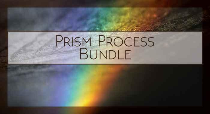 Prism Process Bundle