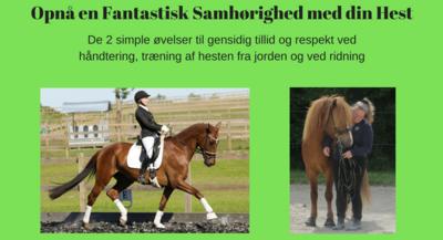 Opnå en Fantastisk Samhørighed med din Hest