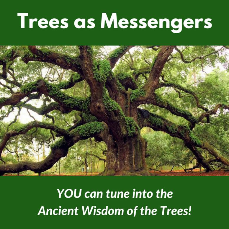 Trees as Messengers
