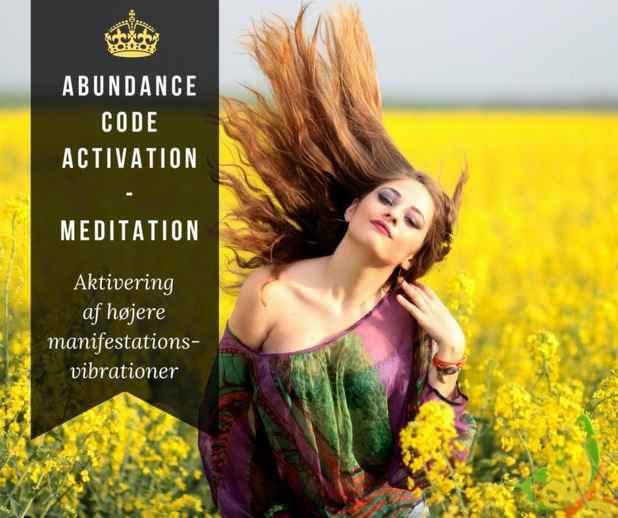 Abundance Code activation - Meditation