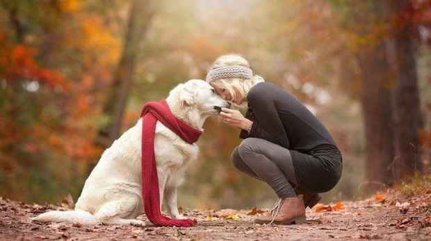 Dog-and-woman.jpg