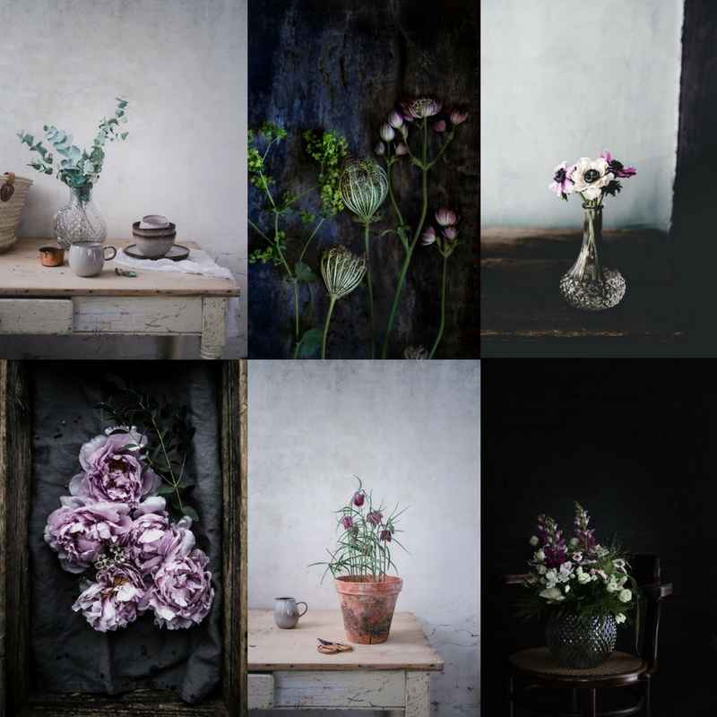 Creative Flower Photography & Styling Workshop