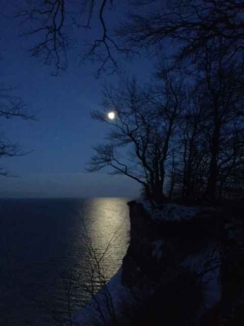 Fuldmånestillevandring på Camønoen - nærvær i Dark sky på Møns klint den 29 maj