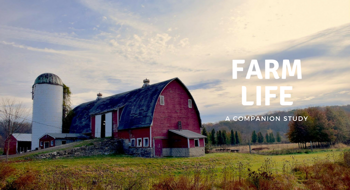 Farm Life Study