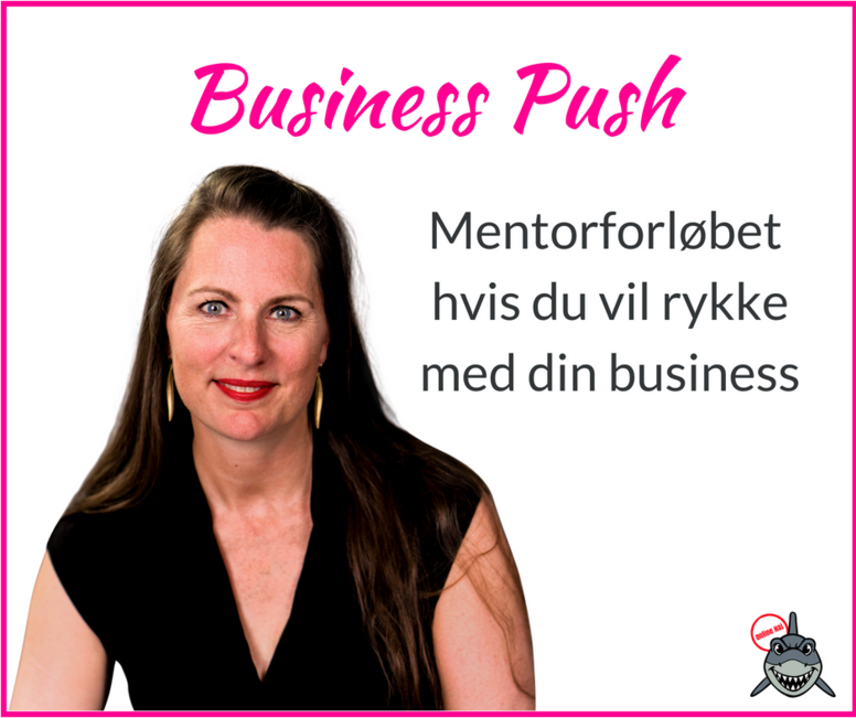 Business Push Mentorforløb