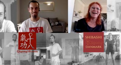 Shibashi Seminar Fabrice Piché 2018
