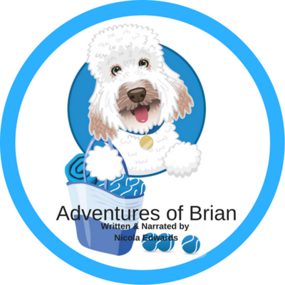 Adventures of Brian Audio CD