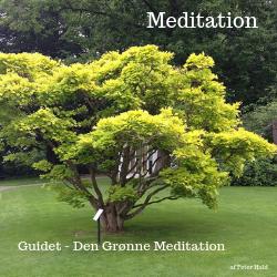 Den Grønne Meditation som Mp3 filer