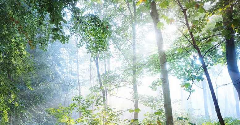 7 Ærkeengle og healing af bevidstheden om at være syndfuld