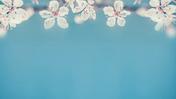 QiGongLife.dk - De 18 harmonier med instruktion.m4v