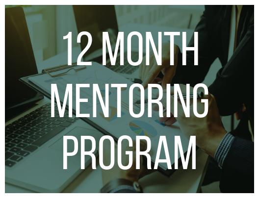 12 Month Mentoring Program