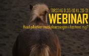 Webinar live