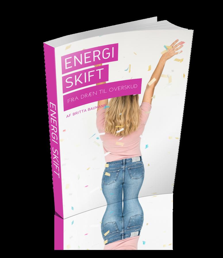 """E-bog """"Energi skift"""""""