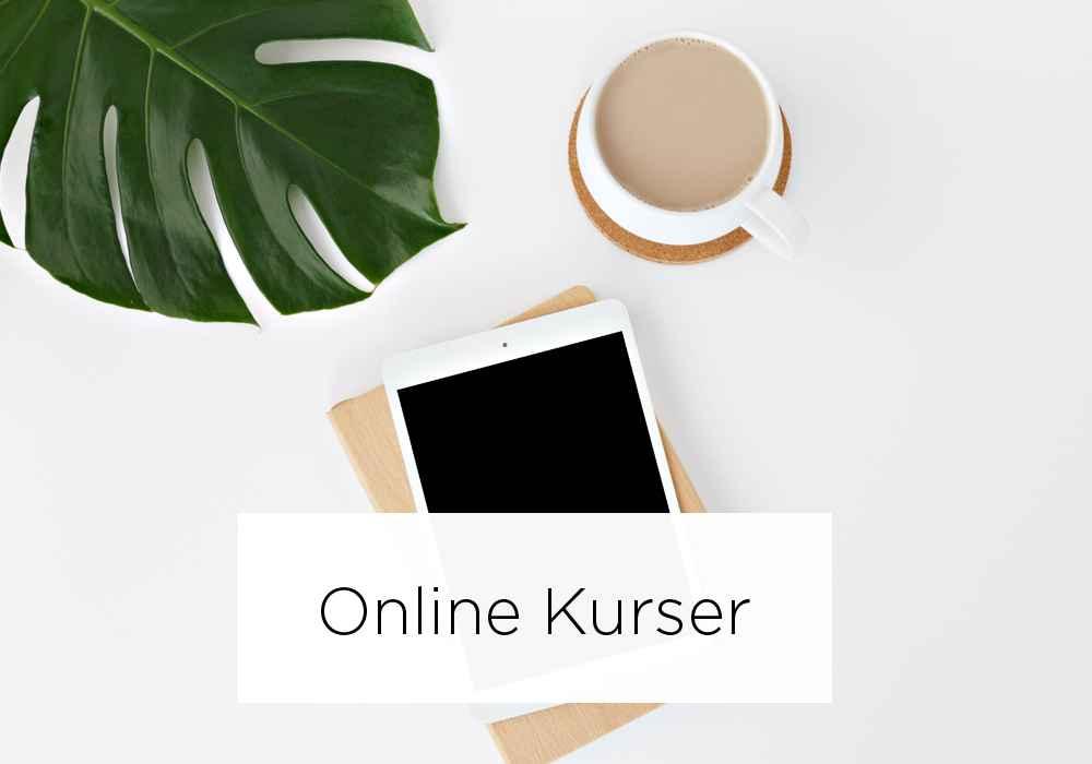 online kurser produkt ny.jpg