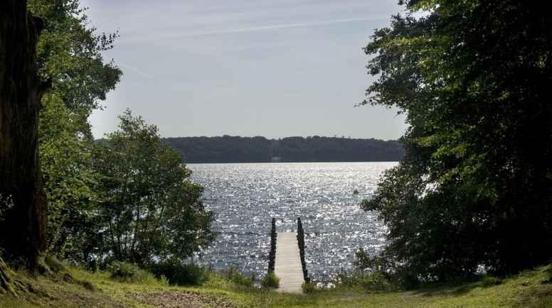 Stillevandring ved Esrum sø - stille og fredfyldt væren
