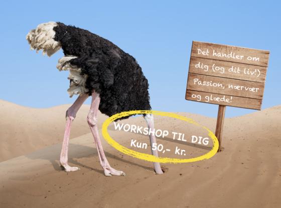 Struds med hovedet i sandet Workshop uden dato