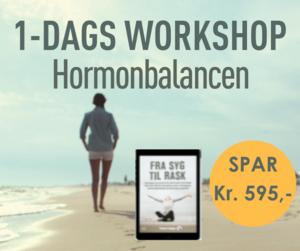 FRA SYG TIL RASK • 1-dags workshop • Hormoner • FB-6.png