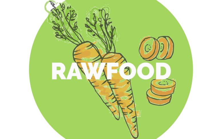 Slank og sund med rawfood