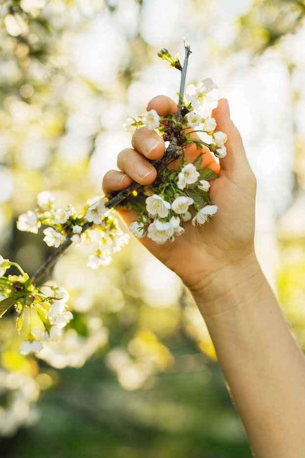 hand-blommor-Är du redo att gå vidare