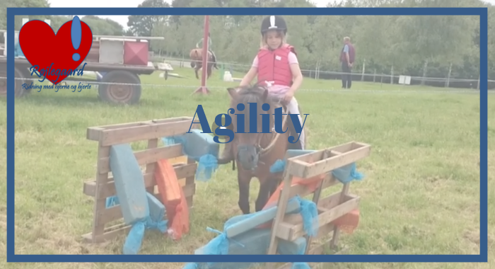 agility700380.png