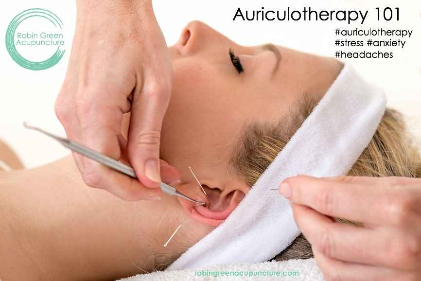 auriculotherapy-101-photo.jpg