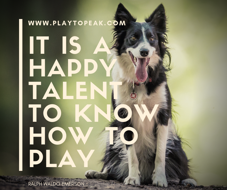 It is a happy talent to know how to play.png