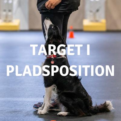 target i pladsposition.png