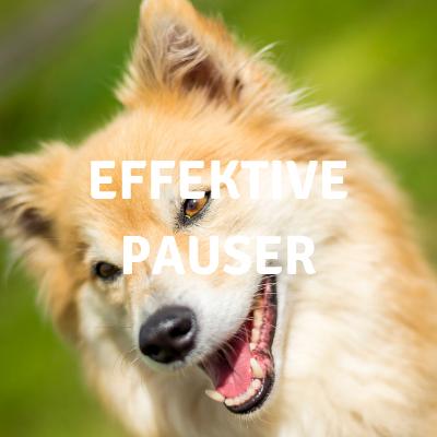 Effektive pauser.png