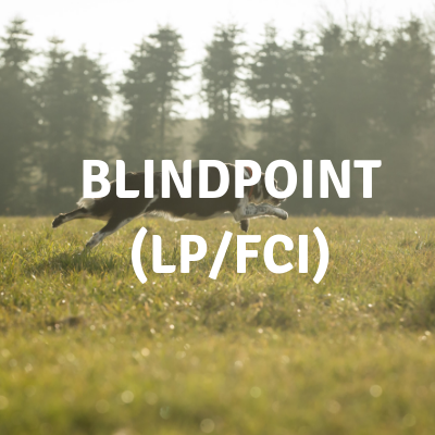 blindpoint.png