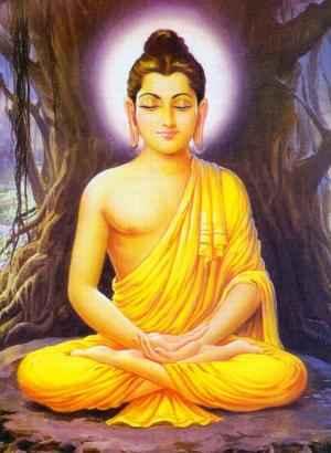 1445buddha
